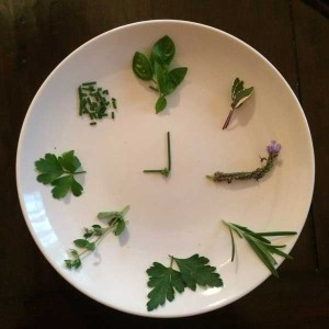 Do you know your herbs?